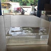 Aquarium Akrilik ukuran P 50 x L 20 x T 25 cm