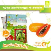 Benih Bibit Tanaman Sayuran Pepaya California Unggul Garuda Seed Urban