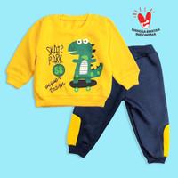 DINO baju bayi laki-laki 6 12 Bulan setelan Baju Anak Berkualitas