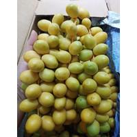 Kurma Muda Kuning 250 gr