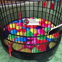 Karpet Sangkar Kandang Murai No 2 3D Bola Alas Tatakan Bahan Spanduk