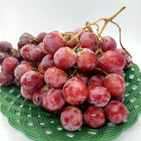 Anggur RedGlobe / Seeded Grape's / Anggur Manis