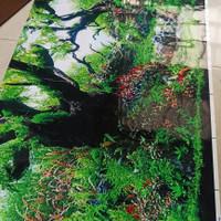 Gambar Belakang Aquarium Tinggi 50 cm Background Aquarium