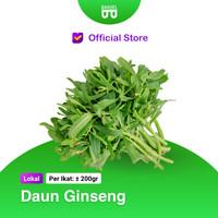 Daun Ginseng - Bakoel Sayur Online