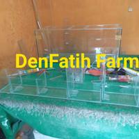 aqurium murah kaca