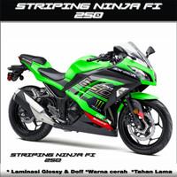 Decal / Striping Sticker variasi Ninja 250 FI semi fullbody monster