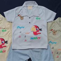 Setelan Oblong Bayi Usia 0-12 BULAN Motif PARROT - Abu-abu