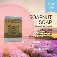 Soapnut Soap