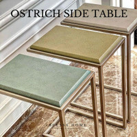 Ostrich side table ( AVAILABLE IN 3 COLORS ) - BLUE MINT