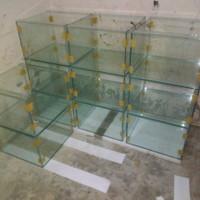 aquarium ukuran 60 Cm