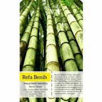 Biji Benih Bambu China F1 Import / Bambu Raksasa / Sarung bantal Murah