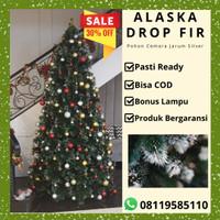 Jual Pohon Natal tipe ALASKA RAINBOW FIR PINE TREE ukuran 120cm