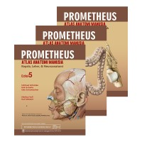 [ ORIGINAL ] Prometheus Atlas Anatomi Manusia Edisi 5 - set 3 buku