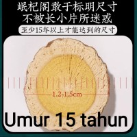 Huang Qi / Astragalus 250gr / 黄芪片