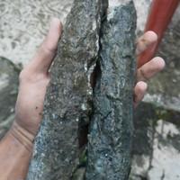 bahan langka black opal semur ranting jumbo