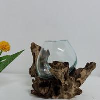Aquarium mini bulat kaca tiup harga special
