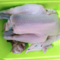ayam kampung potong segar sehat uk 1kg - 6