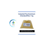 PAC / Polyaluminium Chloride 1 Kg - Industrial Grade