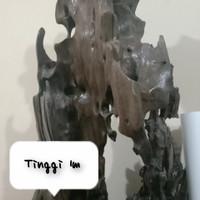 kayu buat aquascape yg berumur puluhan tahun