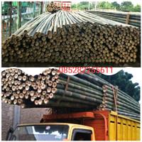 Bambu murah steger 7-8 Cm P6 M