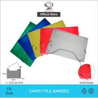Eagle Files Banded Carry File Map Plastik E 308 + Bubble Wrap