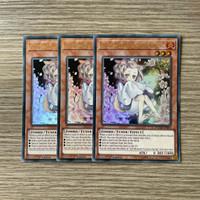 YuGiOh Ash Blossom & Joyous Spring DUDE Ultra
