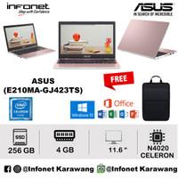 ASUS E210MA GJ423TS N4020 4GB 256GB Intel UHD Graphics 11.6 W10 Pink