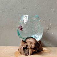 aquarium mini kaca tiup 15cm