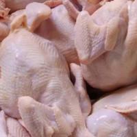 Ayam negeri segar potong 12