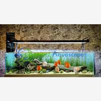 NICKZ Aquascape Natural Full Set