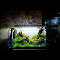 NICKZ Aquascape Natural Full Set Tank 60