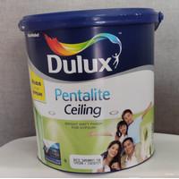 cat plafon cat gypsum cat dulux pentalite cealing 25kg