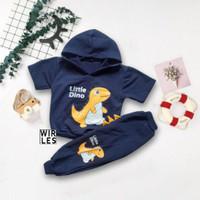 Wirles Setelan Hoodie Dino Baju Anak 1 - 5 Tahun