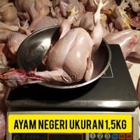 ayam potong segar 1,5 kg termurah sejabodetabek.