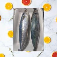 Ikan Kembung Layang Segar 1/2 Kg (500 gram)