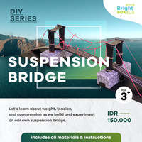 PLAY & LEARN BOX - DIY STEM SERIES - BUILDING SUSPENSION BRIDGE