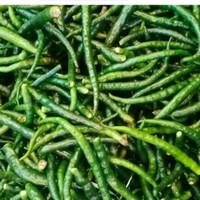 cabe hijau keriting petik tangkai