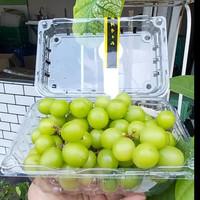 Anggur Ijo Shine Muscat Seedless (1 Pack)