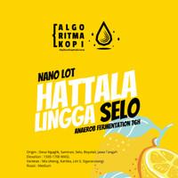 Hattala Lingga Selo Honey Anaerob 76H - AlgoritmaKopi