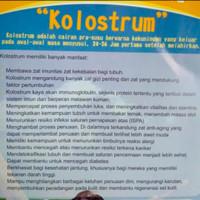 SUSU KOLOSTRUM ORIGINAL 500GR / SUSU BUBUK ETAWA KOLOSTRUM KILOAN