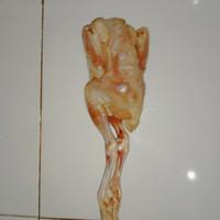 ayam pejantan frozen 0.7