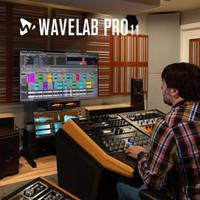 STEINBERG WaveLab 11 Elements Mastering Software