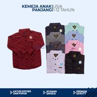 Baju Kemeja Anak Laki Laki Polos 1-13 Tahun Lengan Panjang