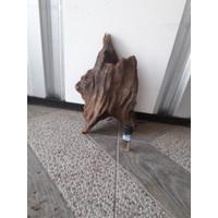 kayu aquascape rentek medium 02
