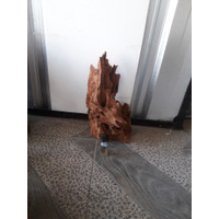 kayu aquascape rentek large 07
