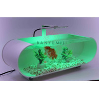 Aquarium Mini Akrilik,Mini Aquarium Akrilik,Aquarium pipa