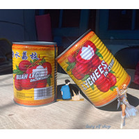 Buah Leci Kaleng 567gr Dalam Sirup Lychee in Syrup Lychees Canned