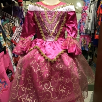 Dress Kostum Baju Karakter Princess Aurora Anak Perempuan Cewek