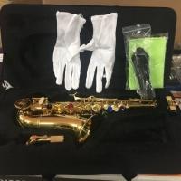 Baby saxophone ostrava gold laquer ABS case original