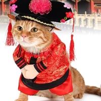 Baju Anjing Dan Kucing Betina Motif Emperor Princess Type C/Baju Imlek